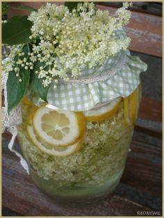 bezova limonada Honeydew, Cantaloupe, Edible Flowers, Finger Foods, Home Remedies, Preserves, Pickles, Cucumber, Korn