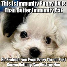 BwahahahahaHA!!!!!!!!!!!!! I have been protected!!!