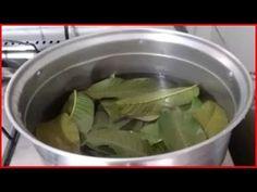 A FOLHA DE GOIABA FAZ MÁGICA EM SEU CORPO! OS RESULTADOS SÃO COMPROVADOS... - YouTube Celery, Pickles, Green Beans, Cucumber, Spinach, Good Food, Vegetables, Youtube, Acne Treatment