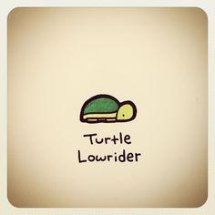 turtle wayne - Google Search Sweet Turtles, Cute Turtles, Baby Turtles, Cute Turtle Drawings, Easy Drawings, Tiny Turtle, Turtle Love, Animal Sketches, Animal Drawings