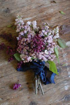 A bundle of lilacs   Photo: elseachelsea
