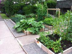 Front Yard Garden - Mid June