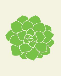 Image result for succulent vector