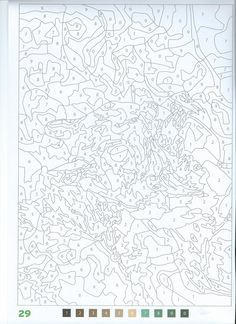 welcome to dover publications creative haven wild animals paint by