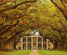 Oak Alley Plantation in Louisiana. I've been here,it is beautiful!