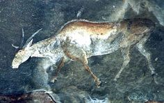 Eland painting by the San Bushman in Africa.  Rock art found in caves.