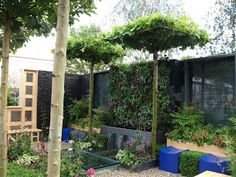 Annie's Little Plot: Chelsea Flower Show - The small gardens