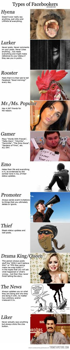 The various types of Facebook users.. I'm sure I have fallen into one or two categories myself in the past!
