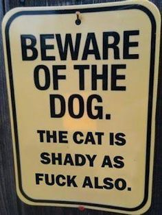 Cats are, by definition, shady.