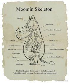 Moomin Skeletal Diagram by koomalaama Tove Jansson, Moomin Wallpaper, Les Moomins, Moomin Valley, Little My, Just In Case, Illustrators, Illustration Art, Character Design