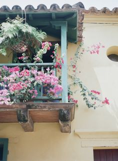 Balcony Flowers in Cartagena Colombia | photography by http://www.sweetteaphotographybylisamarie.com/