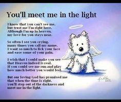 The Rainbow Bridge Poem Pet Memorial for Pet Loss Of A Pet Death Dog Passed Away Condolences Pet Loss Quotes, Sad Quotes, Dog Death Quotes, Famous Quotes, Pet Loss Grief, Loss Of Dog, Quotes Rainbow, Rainbow Bridge Poem, Pet Dogs