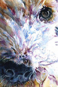 Fox Terrier by John D Benson