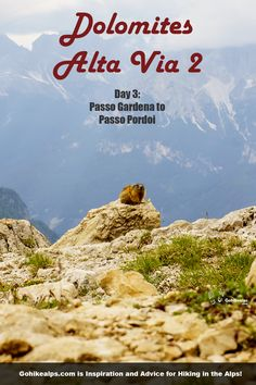 Dolomites Alta Via 2 Day Passo Gardena to Passo Pordoi. Caught in a surprise whiteout on the Sella Massif in July! Walking In Sunshine, Best Red Wine, Better Weather, Us Map, All The Way Down, Hiking Gear, White Out, Alps, Trekking