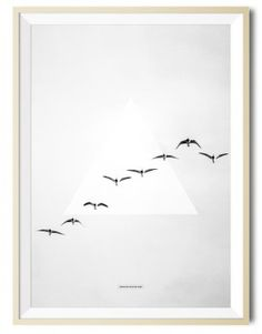 Birds flying photography - Another Poster Shop