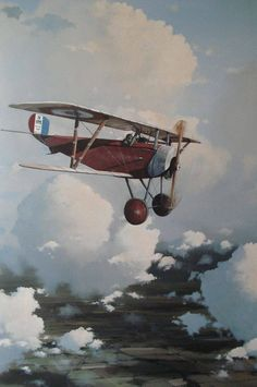 JEAN MARIE DOMINIQUE NAVARRE_1895-1919_French Ace.