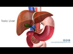 7 Common Foods To Detoxify Your Liver Naturally