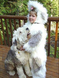 Old English Seepdog