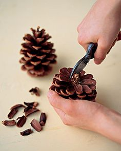 This unique pine cone wreath in shades of blue, gray, pink and white would make a lovely house-warming gift or brighten up your own home. Each pine cone is hand Nature Crafts, Fall Crafts, Holiday Crafts, Crafts To Make, Crafts For Kids, Diy Crafts, Kids Diy, Pine Cone Art, Pine Cone Crafts
