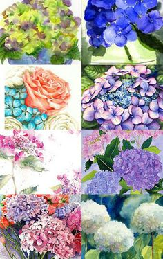 Great selection of hydrangea paintings from Etsy