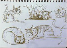 Quick #sketch #DailySketch #cats #catsofinstagram #CatsOfTwitter #drawing #Pencildrawing #sketching #sketchbook