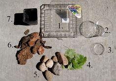 Snail Habitat Supplies by elysianstudiosart, via Flickr