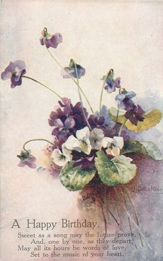 white flowers & violets