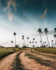 Keep your feet on the ground but your mind on the sky, Puerto Rico. Puerto Rico, Photo Credit, Country Roads, Mindfulness, The Incredibles, Sky, Explore, Instagram Posts, Image
