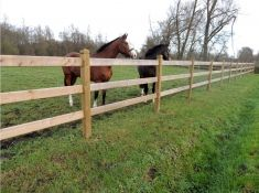 Dinowood Houten Paardenomheining