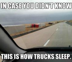 Funny pictures about Such Majestic Creatures In Their Natural Habitat. Oh, and cool pics about Such Majestic Creatures In Their Natural Habitat. Also, Such Majestic Creatures In Their Natural Habitat photos. Funny Shit, Funny Car Memes, Stupid Memes, Hilarious, Funny Stuff, Truck Memes, Funny Things, Truck Humor, Crazy Things