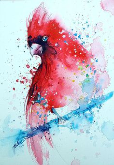 Cardinal  watercolor painting  A4  8.3 x 11.7 by TilenTiArtist, $28.00