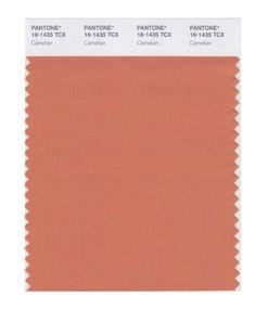 PANTONE SMART 16-1435X Color Swatch Card, Carnelian Pantone https://www.amazon.com/dp/B004O7FAWS/ref=cm_sw_r_pi_dp_x_kcMgyb0QMJQFK