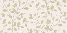 Branches (40669) - Albany Wallpapers - Fine twig branches in soft brown with light green leaves  create a pleasing all over effect.  Available in other colours. Please request sample for true colour match.