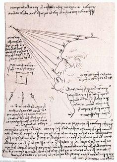 Leonardo Da Vinci-Study of the effect of light on a profile head (facsimile)