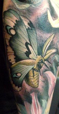 moth tattoo done by bjorn liebner Trendy Tattoos, Love Tattoos, Beautiful Tattoos, Body Art Tattoos, New Tattoos, Tattoos For Guys, Tattoos For Women, Tatoos, Luna Moth Tattoo