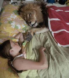 #melaniegriffith #lion #amazing #pet http://www.cribeo.com/estilo_de_vida/5750/mascotas-raras-que-puedes-tener-si-no-eres-de-perros-ni-de-gatos