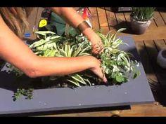 Grovert Living Wall Planter - Ghostwood Frame Kit