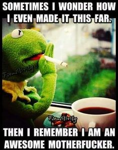 Image about kermit memes funny adult in quotes & text by Funny Kermit Memes, Funny Relatable Memes, Haha Funny, Funny Jokes, Hilarious, Funny Stuff, Sometimes I Wonder, Badass Quotes, Sarcastic Quotes