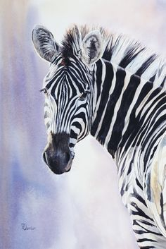 Marvelous Drawing Animals In The Zoo Ideas. Inconceivable Drawing Animals In The Zoo Ideas. Zebra Drawing, Zebra Painting, Zebra Decor, Zebra Art, Animal Sketches, Animal Drawings, Zebras, Watercolor Animals, Watercolor Paintings