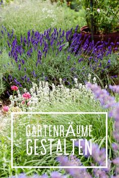 Die 8 besten Bilder von Garten & Co | Backyard landscaping