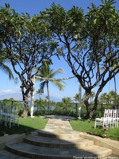 Plumeria Point Nestled Along The Edges Of Four Seasons Sculpture Garden A Natural Arbour Trees Enhances This Location With Its S