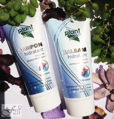 Shampoo, Personal Care, Bottle, Beauty, Plant, Self Care, Personal Hygiene, Flask, Beauty Illustration