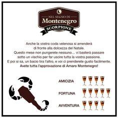 Nel segno di Montenegro