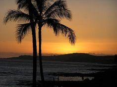 Gorgeous Sunset Backdrop