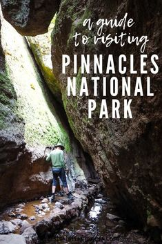 A Guide to Visiting Pinnacles National Park - - Pinnacles National Park is one of the nation's newest national parks, having been changed from a national monument under Obama in Compared. Arcadia National Park, Tayrona National Park, Mt Rainier National Park, Torres Del Paine National Park, Everglades National Park, Death Valley National Park, Capitol Reef National Park, California National Parks, Us National Parks
