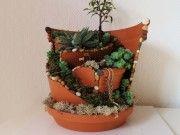 Video: Minigarten im Topf – Zerbrochenen Blumenkübel upcyceln