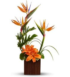 Birds of Paradise & Tiger Lillies
