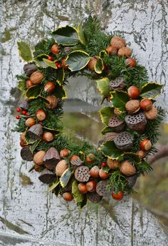 Autumn wreath with nuts Christmas Door Wreaths, Autumn Wreaths, Wreaths For Front Door, Holiday Wreaths, Holiday Decor, Corona Floral, Wreaths And Garlands, Arte Floral, Xmas Decorations