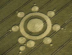 Danebury Ring, Hampshire  2nd August 1998   Wheat BUB 35mm