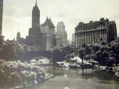 Vintage RPPC Postcard Central Park New York by TBTooVintagePhotos, $6.25